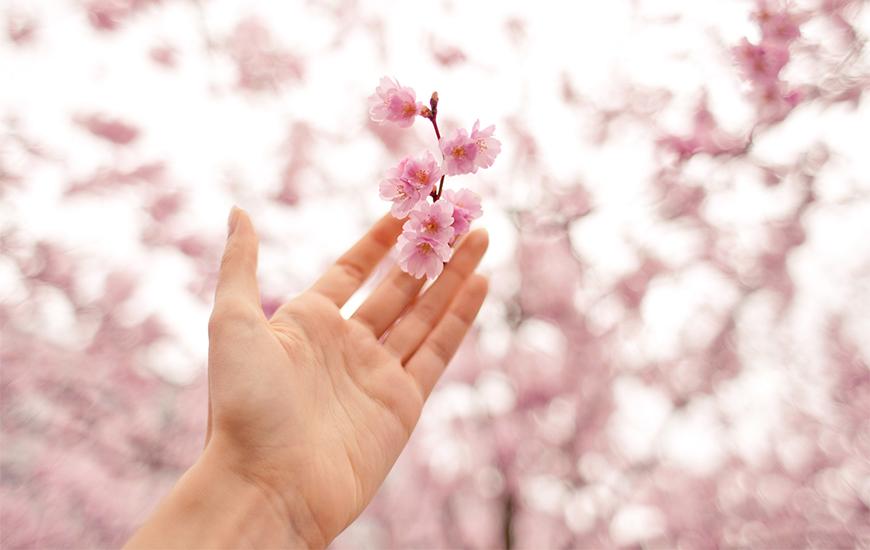 出会いと別れの季節、あなたがもっと素敵になる春にしよう