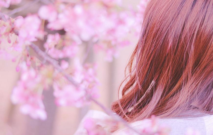 お花見デートにおすすめ!厳選都内お花見スポット